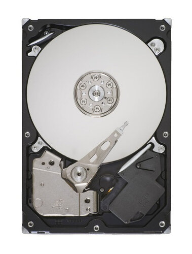 Seagate Pipeline HD ST3500312CS #2