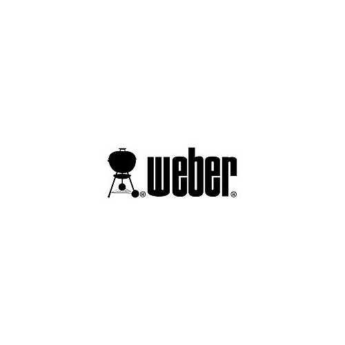 Weber Go-Anywhere #2